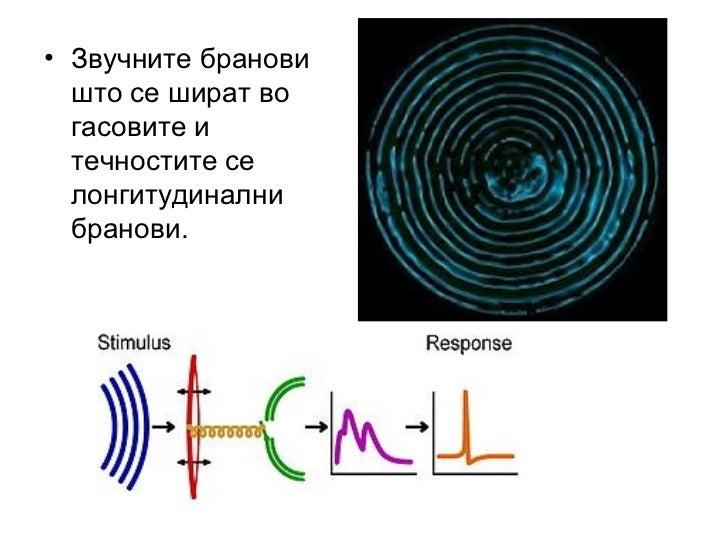 • Најчестозвукотговосприемамепреку  воздухот.Когасесоздаваатзвучните  бранови(звучниотизворосцилира)  воздух...