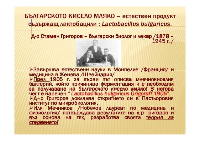 БЪЛГАРСКОТО КИСЕЛО МЛЯКО – естествен продукт съдържащ лактобацили : Lactobacillus bulgaricus.  Д-р Стамен Григоров – бълга...