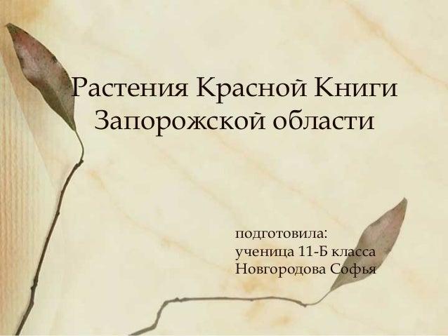 Растения Красной Книги Запорожской области           подготовила:           ученица 11-Б класса           Новгородова Софья