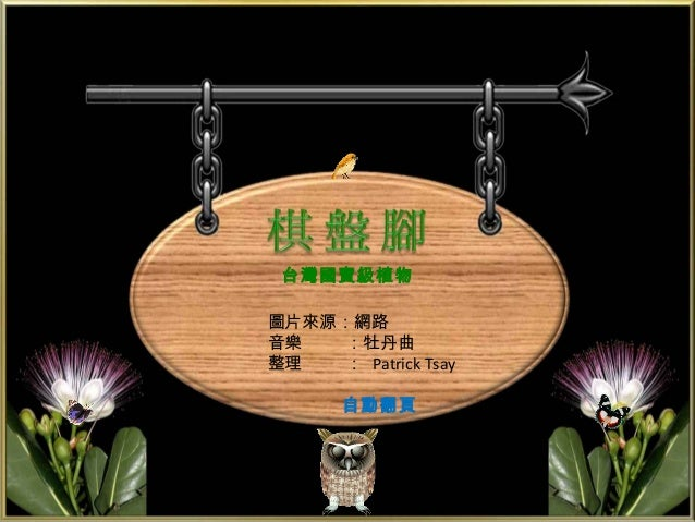 台灣國寶級植物圖片來源:網路音樂   :牡丹曲整理   : Patrick Tsay       自動翻頁