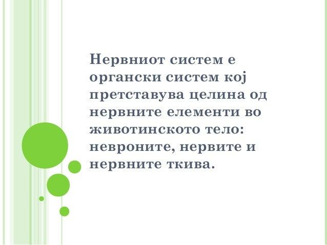 болести на нервниот систем  весна карчевска Slide 2