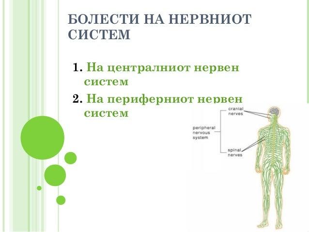 болести на нервниот систем  весна карчевска Slide 3