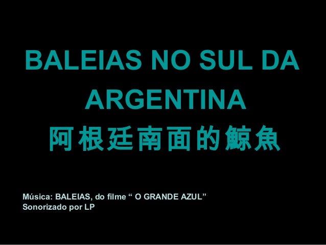 """BALEIAS NO SUL DA   ARGENTINA 阿根廷南面的鯨魚Música: BALEIAS, do filme """" O GRANDE AZUL""""Sonorizado por LP"""