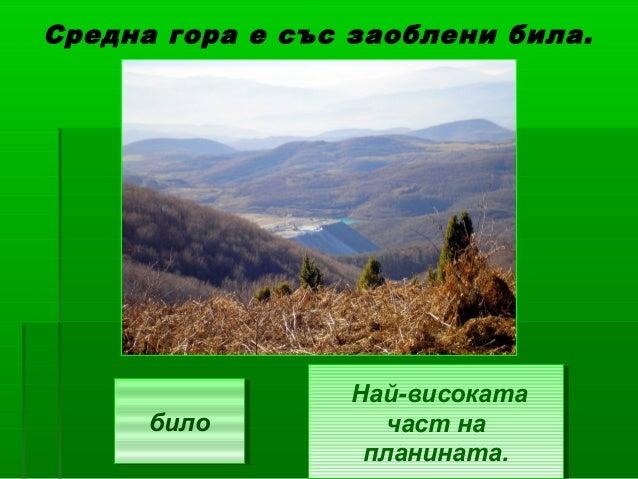 Средна гора е със заоблени била.                 Най-високата                 Най-високата      било      било          ча...