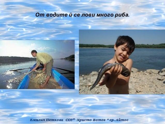 От водите й се лови много риба.