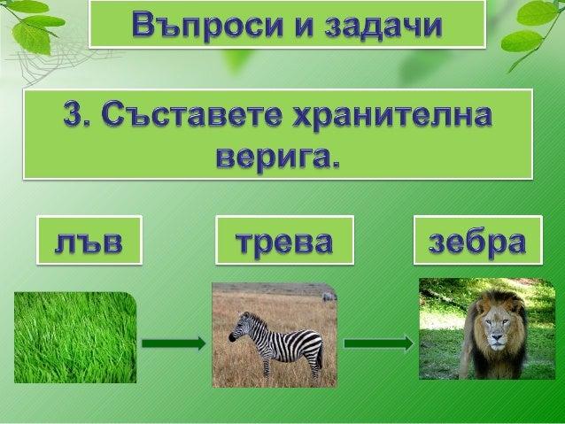 групиране на животните според начина им на хранене
