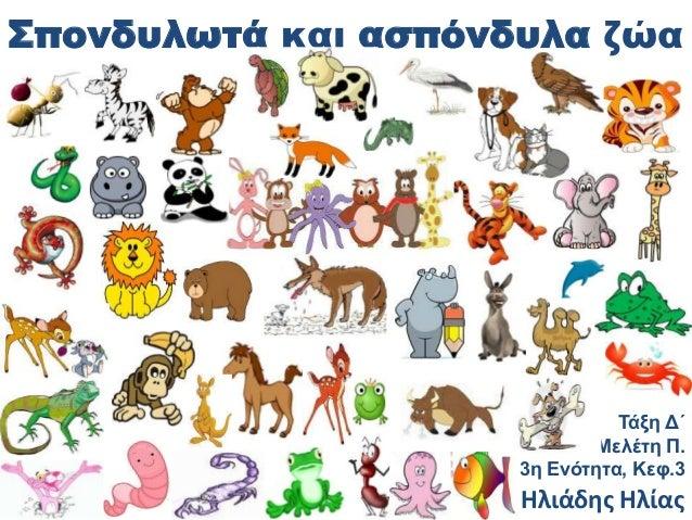 Σπονδυλωτά και ασπόνδυλα ζώα                               Τάξη Δ΄                            Μελέτη Π.                   ...