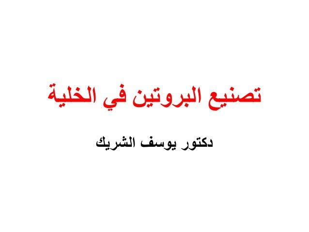 تصنيع البروتين في الخلية     دكتور يوسف الشريك