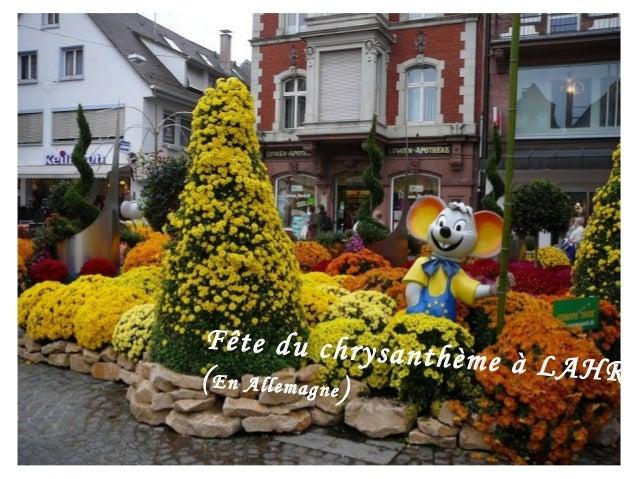 Fête du chrysan                thème à LAHR( En Allemagne)