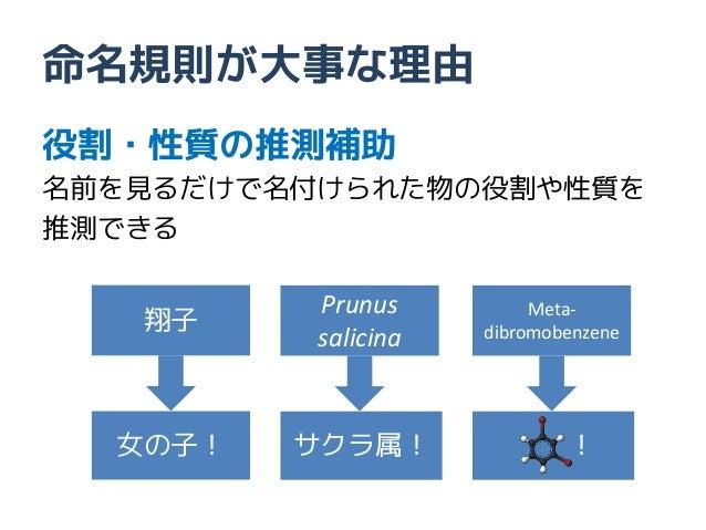 命名規則が大事な理由役割・性質の推測補助名前を見るだけで名付けられた物の役割や性質を推測できる          Prunus   翔子                          Meta-          salicina   di...