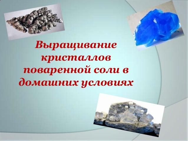 Выращивание    кристаллов поваренной соли вдомашних условиях