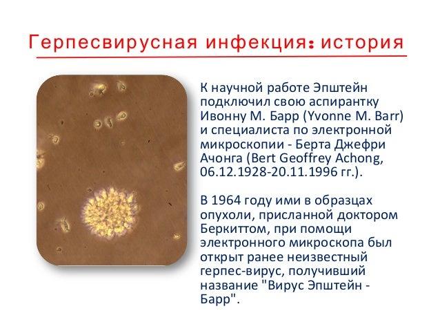 Харальд цур Хаузен Германский центр рака в Гейдельберге 2008 г. – Нобелевская премия «за открытие вирусов папилломы челове...