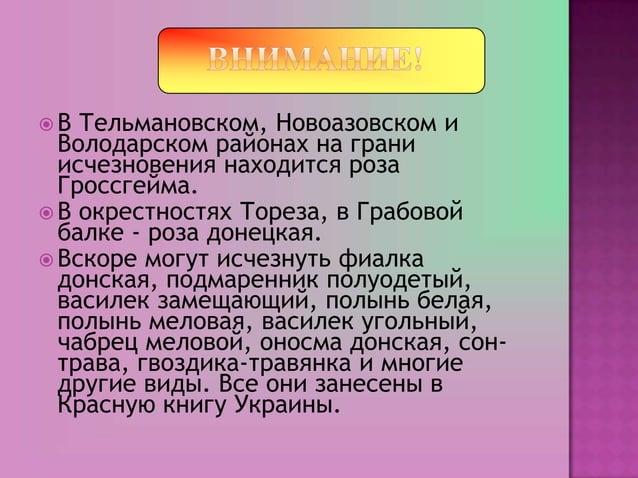 В  Тельмановском, Новоазовском и  Володарском районах на грани  исчезновения находится роза  Гроссгейма. В окрестностях ...