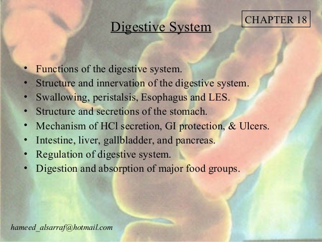CHAPTER 18                          Digestive System   •   Functions of the digestive system.   •   Structure and innervat...