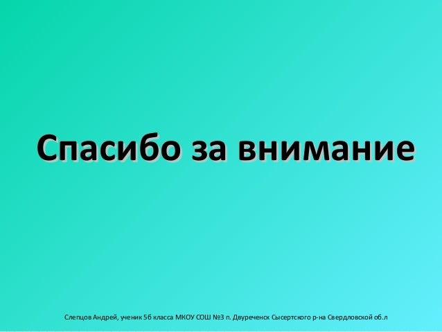 Спасибо за внимание Слепцов Андрей, ученик 5б класса МКОУ СОШ №3 п. Двуреченск Сысертского р-на Свердловской об.л
