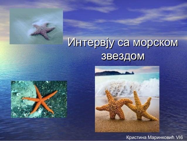 Интервју са морскомИнтервју са морскомзвездомзвездомКристина Маринковић VI6