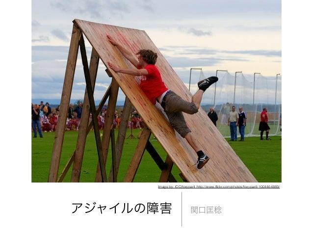 アジャイルの障害 関口匡稔Image by: (CC)foxypar4 http://www.flickr.com/photos/foxypar4/1004464889/