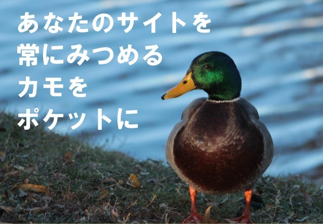 0【Confidential】Copyright (C) CREATIVEHOPE,Inc. All Rights Reserved. あなたのサイトを 常にみつめる カモを ポケットに