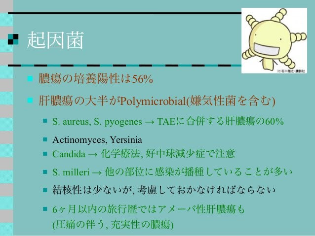 起因菌  膿瘍の培養陽性は56%  肝膿瘍の大半がPolymicrobial(嫌気性菌を含む)  S. aureus, S. pyogenes → TAEに合併する肝膿瘍の60%  Actinomyces, Yersinia  Can...