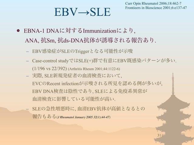 EBV→SLE  EBNA-1 DNAに対するImmunizationにより, ANA, 抗Sm, 抗ds-DNA抗体が誘導される報告あり. – EBV感染症がSLEのTriggerとなる可能性が示唆 – Case-control study...
