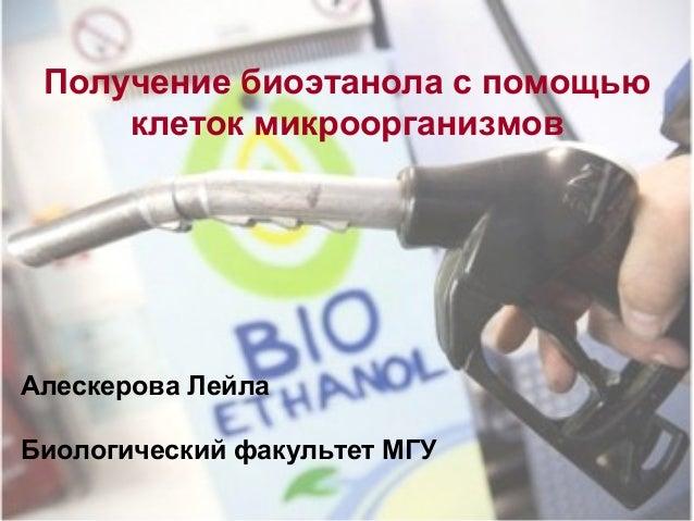 Получение биоэтанола с помощью клеток микроорганизмов Алескерова Лейла Биологический факультет МГУ