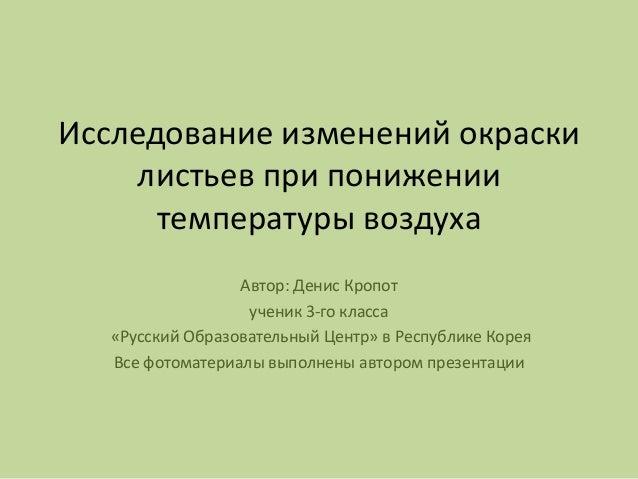 Исследование изменений окраски листьев при понижении температуры воздуха Автор: Денис Кропот ученик 3-го класса «Русский О...