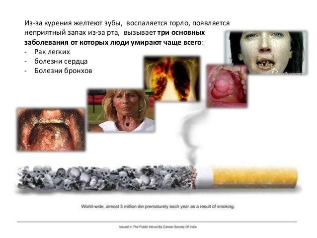 Но курильщик, который следует «новой моде», активно подавляет защитные реакции и продолжает делать затяжки. С каждой новой...
