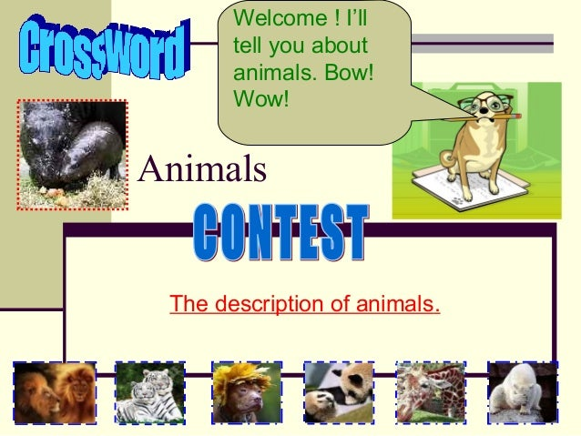Welcome ! I'll tell you about animals. Bow! Wow!  Animals  The description of animals.