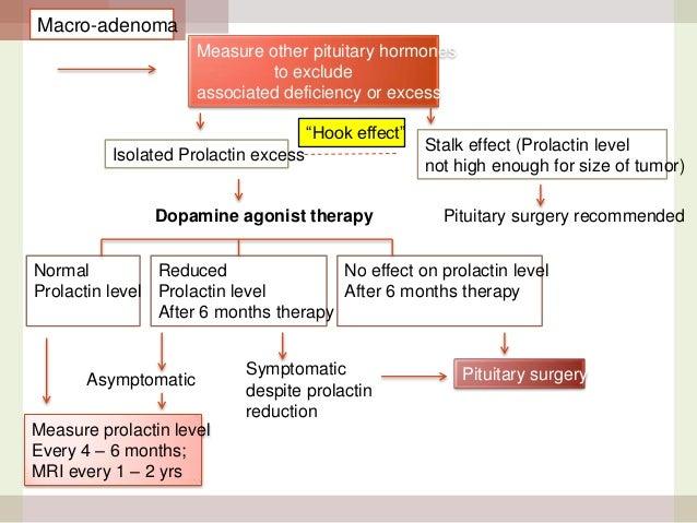 Hyperprolactinemia work up