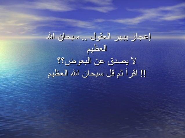 إعجاز يبهر العقول .. سبحان ال العظيم ل يصدق عن البعوض؟؟ !! اقرأ ثم قل سبحان ال العظيم