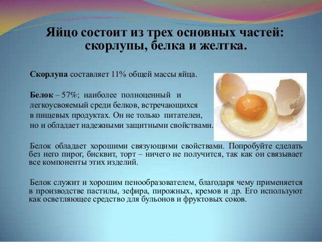 Реферат по теме блюда из яиц 8130