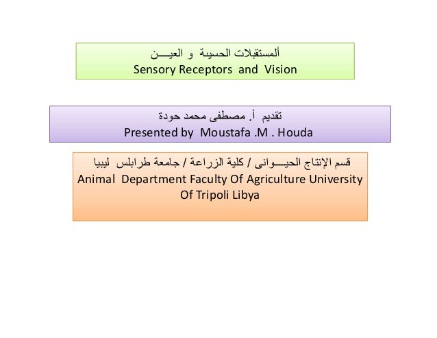 """' € ƒ """"… Sensory Receptors and Vision . Presented by Moustafa .M . Houda € •/ / Animal Department Faculty Of Agriculture U..."""