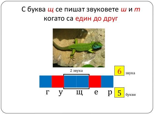 С буква щ се пишат звуковете ш и т когато са един до друг  6 ?  2 звука  г  у  щ  е  звука  р 5 ?  букви