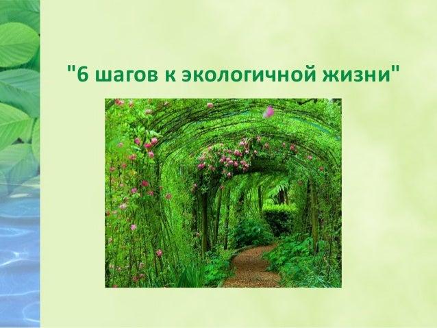 """""""6 шагов к экологичной жизни"""""""