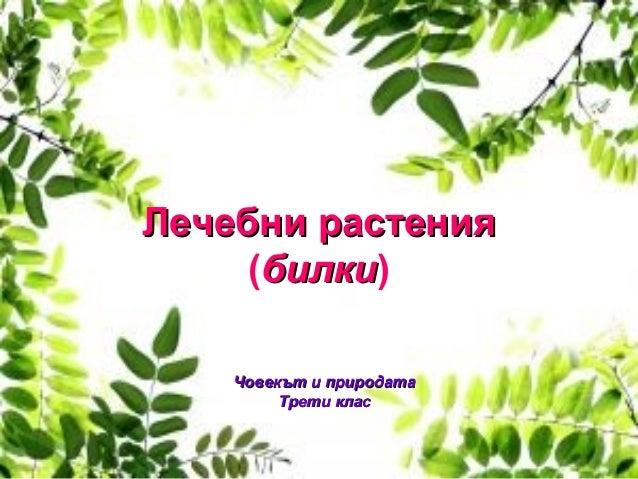 Лечебни растенияЛечебни растения (билкибилки) Човекът и природатаЧовекът и природата Трети класТрети клас
