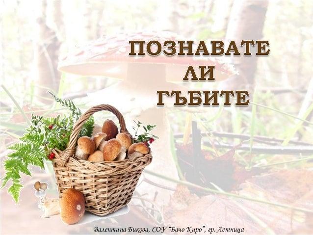 """Валентина Бикова, СОУ """"Бачо Киро"""", гр. Летница"""