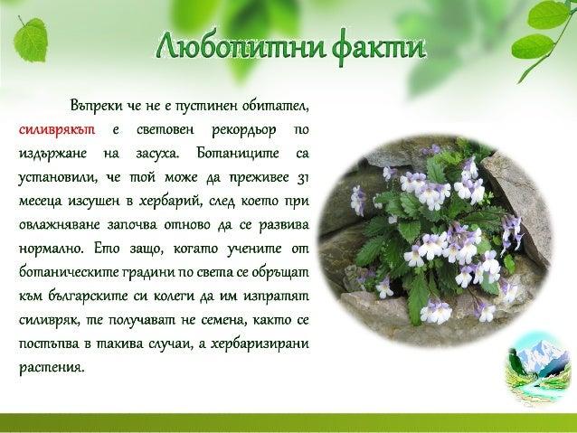 почви и растителен свят