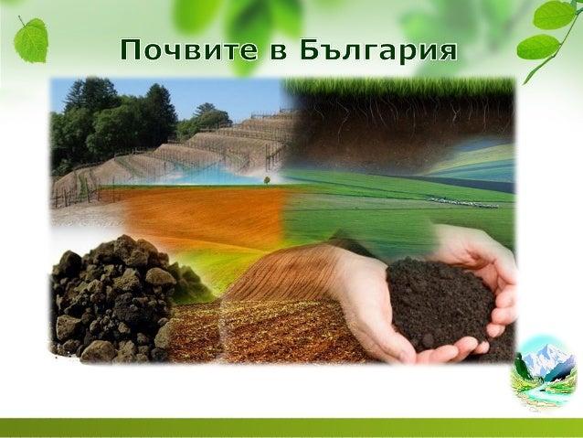 Почви в България