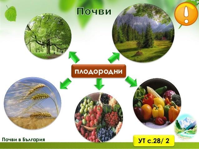 Почви в България Плодородни са почвите в Дунавската равнина, Горнотракийската низина и полетата. Там се отглеждат различни...