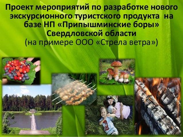 Проект мероприятий по разработке нового экскурсионного туристского продукта на базе НП «Припышминские боры» Свердловской о...
