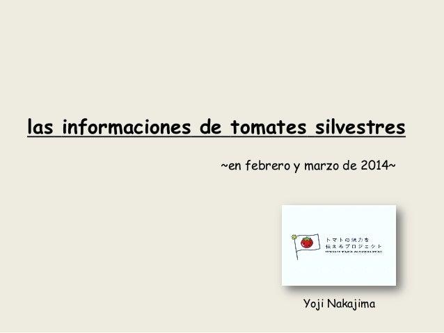 las informaciones de tomates silvestres ~en febrero y marzo de 2014~ Yoji Nakajima
