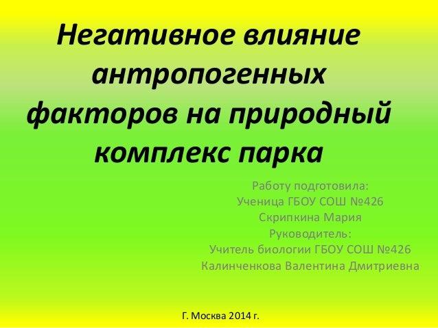Негативное влияние антропогенных факторов на природный комплекс парка Работу подготовила: Ученица ГБОУ СОШ №426 Скрипкина ...