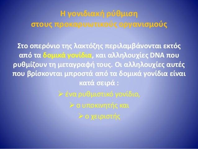 Όταν απουσιάζει η λακτόζη • Το οπερόνιο της λακτόζης δε μεταγράφεται ούτε μεταφράζεται, όταν απουσιάζει από το θρεπτικό υλ...
