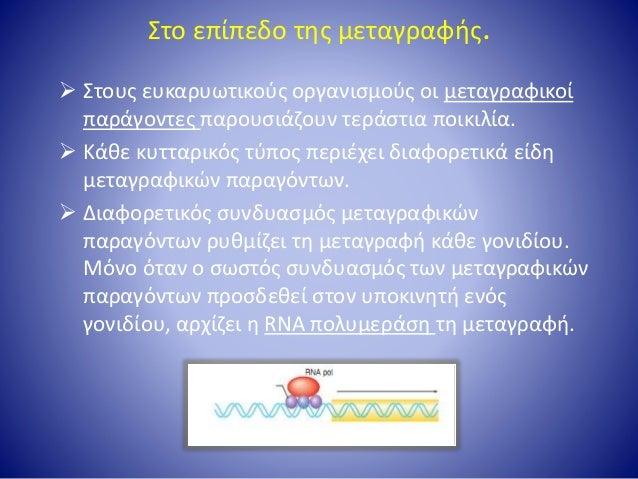 Στο επίπεδο μετά τη μεταγραφή Τα κύτταρα έχουν μηχανισμούς με τους οποίους γίνεται η ωρίμανση του πρόδρομου mRNA και καθορ...