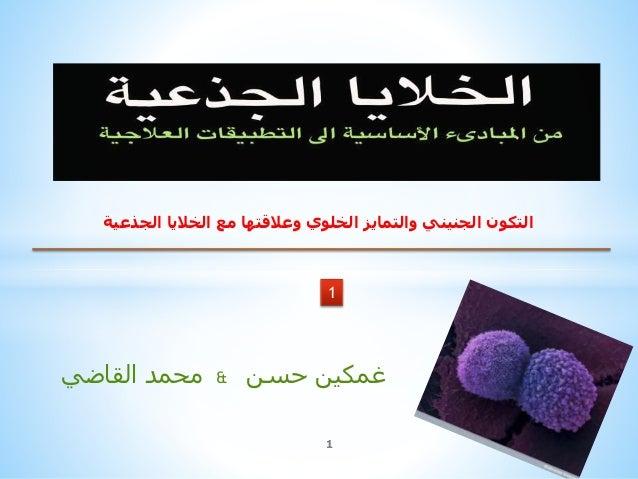 القاضي محمد & غمكينحسن 1 1 الجذعية الخاليا مع وعالقتها الخلوي والتمايز الجنيني التكون