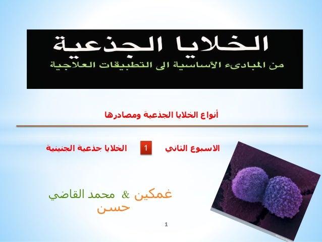 محمدالقاضي & غمكين حسن 1 1 ومصادرها الجذعية الخاليا أنواع الجنينية جذعية الخاليا الثاني االسبوع