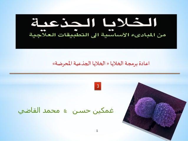 القاضي محمد & غمكينحسن 3 1 الخاليا برمجة اعادة«املحرضة الجذعية الخاليا»
