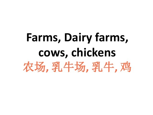 Farms, Dairy farms, cows, chickens 农场, 乳牛场, 乳牛, 鸡