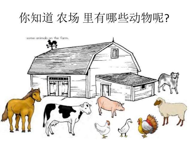 你知道 农场 里有哪些动物呢?