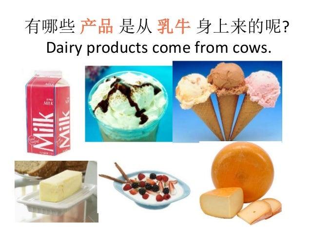 有哪些 产品 是从 乳牛 身上来的呢? Dairy products come from cows.